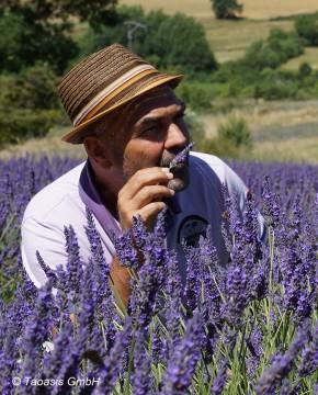 Taoasis-Geschäftsführer und -Gründer Axel Meyer lebt und liebt die Natur