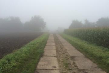 Feldweg im Herbst