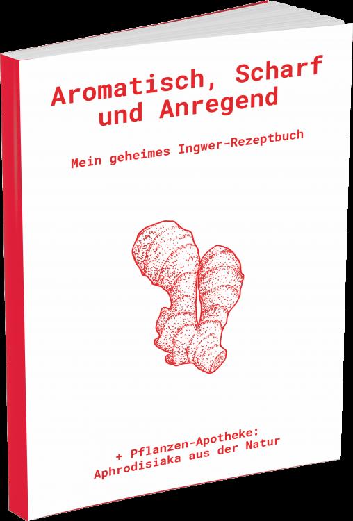 Ingwer Rezeptbuch
