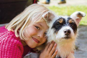 Rund 30 Millionen Haustiere werden von den Deutschen liebevoll gehegt und gepflegt.