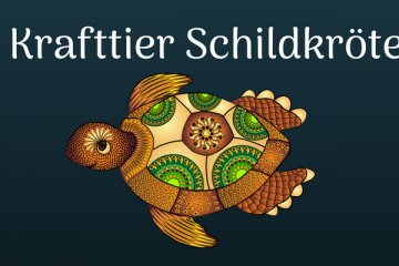 das Krafttier Schildkröte ist ein weises Tiergeistwesen, wenn du ihr folgst