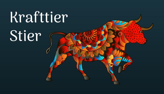 Stier als Krafttier